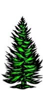 knobby spruce